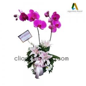 bunga-meja-surabaya002